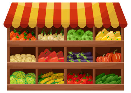 Vegetable farmer shop. Counter with products. Vector