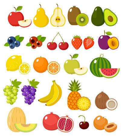 Fruit on a white background isolated. Vector illustration Illustration