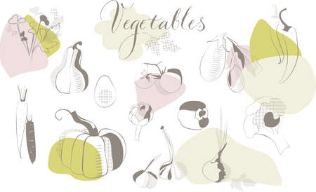 Collection of hand drawn vegetables, isolated elements, vector design. great for menu design, flyers