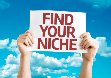 niche: Hands holding Find Your Niche card with sky background