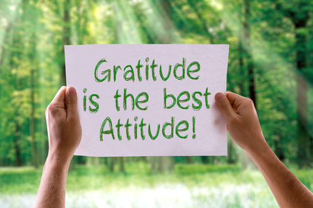 agradecimiento: Gratitud manos sosteniendo la tarjeta es mejor actitud con el fondo de la naturaleza
