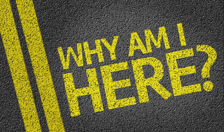 i am here: Why Am I Here written on asphalt road