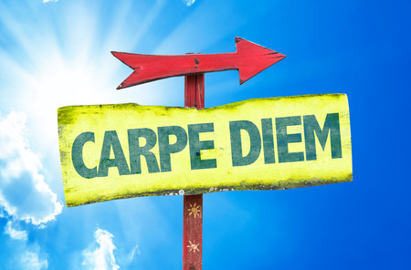 seize: Signpost with the latin phrase Seize the day on sky background