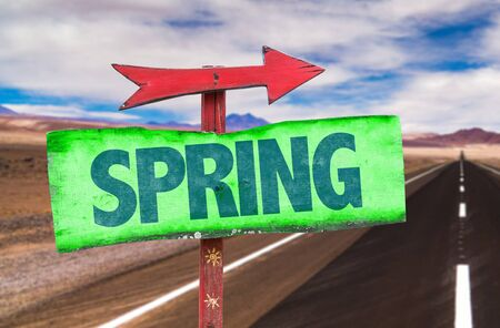 springbreak: Signpost with the text Spring on road background Stock Photo
