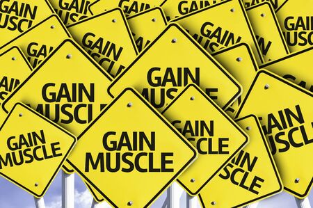 muscle gain: Multiple road signs with text: Gain Muscle