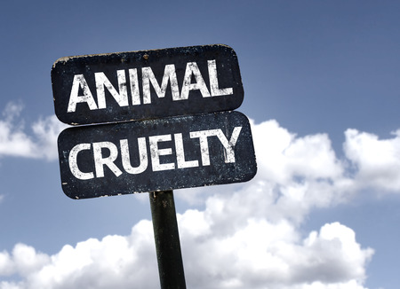 animal cruelty: Animal Cruelty sign with clouds and sky background