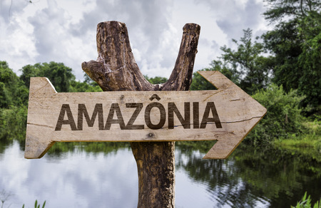 Wooden sign board in wetland with text: Amazonia (Amazon rainforest in Portuguese) Stock Photo