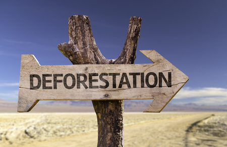 Deforestation sign with arrow on desert background