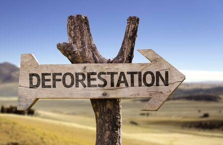 deforestacion: Deforestation sign with arrow on desert background