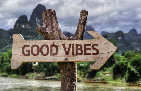 Wooden sign board in wetland with text: Good vibes
