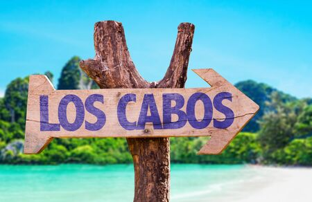 Wooden sign board in wetland with text: Los Cabos