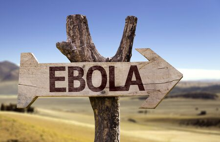 disease patients: Ebola sign with arrow on desert background