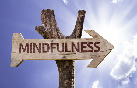 Mindfulness sign with arrow on sunny background
