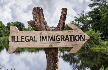 Wooden sign board in wetland with text: Illegal immigration
