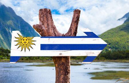 bandera de uruguay: Uruguay flag wooden sign board in wetland background