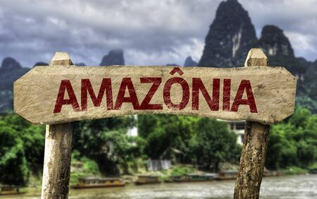 amazonia: Wooden sign board in wetland with text: Amazonia (Amazon Rainforest in Portuguese)