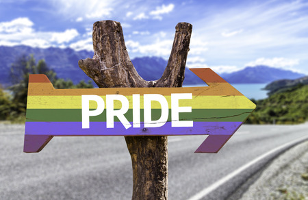 Pride sign with arrow on road background