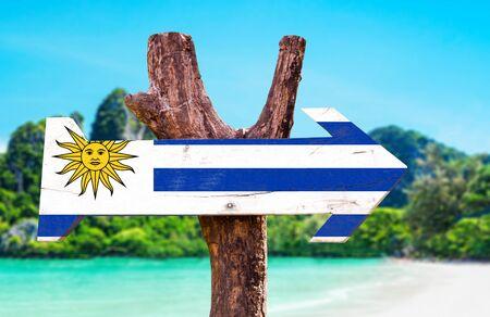 bandera uruguay: bandera de Uruguay tablero de la muestra de madera en el fondo de los humedales Foto de archivo