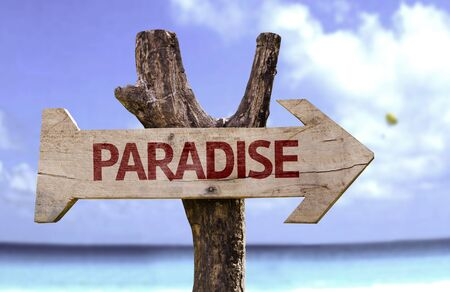 Paradise sign with arrow on beach background