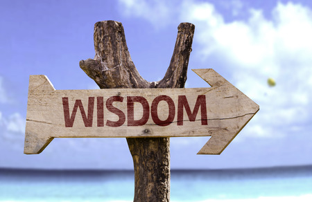 common sense: Wisdom sign with arrow on beach background
