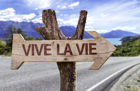 Vive la Vie (live life in French) sign with arrow on road background