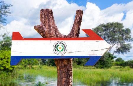 bandera de paraguay: bandera de Paraguay tablero de la muestra de madera en el fondo de los humedales