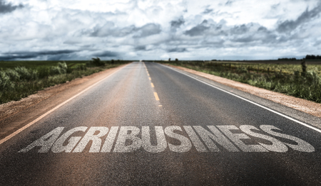 agribusiness: Agribusiness written on the road sign with clouds and sky background