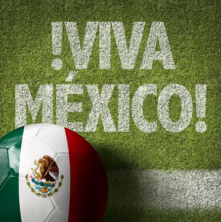 Text on soccer field: Viva Mexico Foto de archivo