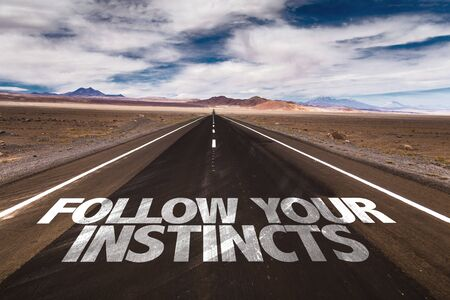 Follow your instincts written on the road