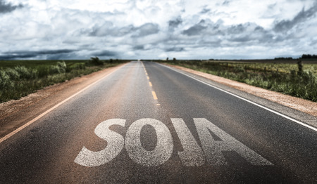 soja: Soja (soybean in Portuguese) written on the road Stock Photo