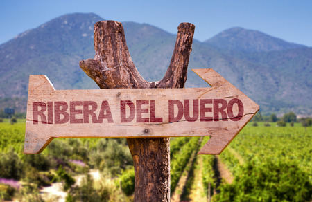 Wooden sign board in park with text: Ribera del duero