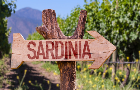 vinery: Sardinia wooden sign with winery background