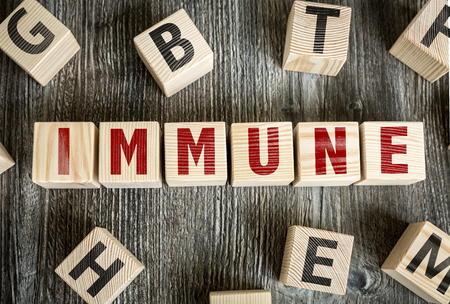 Immune written on a wooden cube background Stock Photo