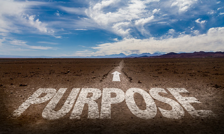 Purpose written on desert background