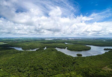 Aerial view of wetlands in Recife