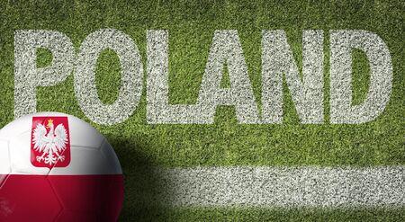 Poland themed soccer concept