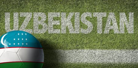 Uzbekistan themed soccer concept Stok Fotoğraf