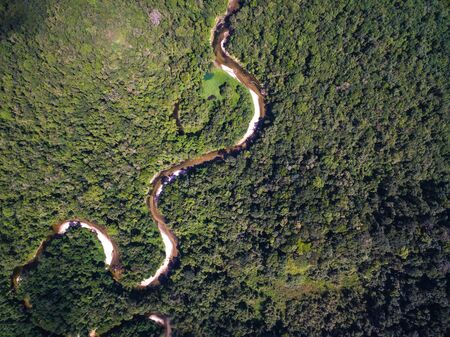Top view of river in rainforest, Brazil 免版税图像