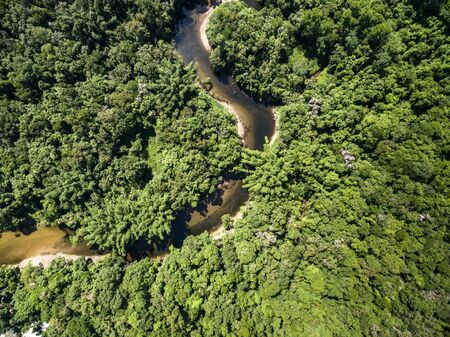 High angle view of rainforest in Brazil Banque d'images