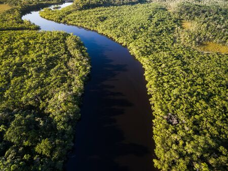 High angle view of rainforest in Brazil