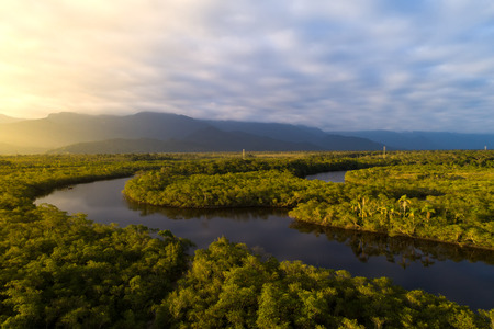 Amazon Rainforest in Brazilië Stockfoto - 84929288