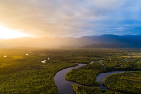 브라질 아마존 열대 우림
