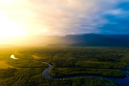 Amazon Rainforest w Brazylii