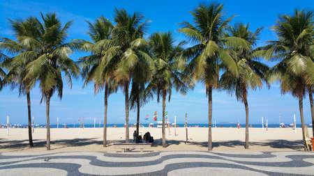 Coconut trees on Copacabana beach Rio de Janeiro Brazil.