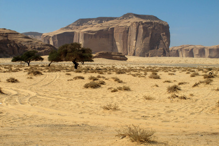 Madain Saleh, archaeological site with Nabataean tombs in Saudi Arabia (KSA) 版權商用圖片
