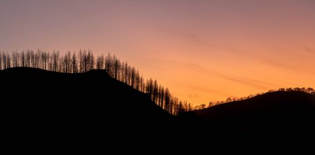 Silhouette of forest at sunset with the sun setting behind the mountains of Tamadaba in Gran Canaria (Spain). Nature concept. Nature concept
