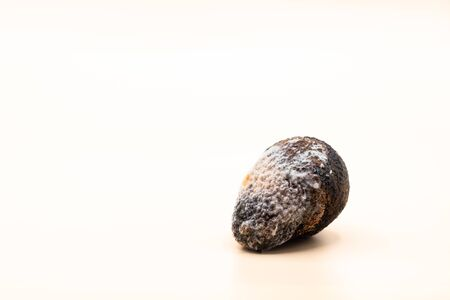 Image of a rotten avocado with mold on light background. Wasting food concept