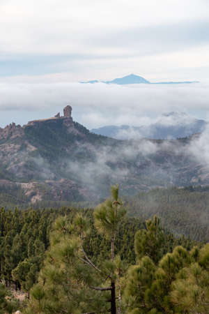 Scenic view of Roque Nublo and El Teide with sea of clouds bellow them and pine forest in foreground in Gran Canaria, Spain. Natur concept Standard-Bild