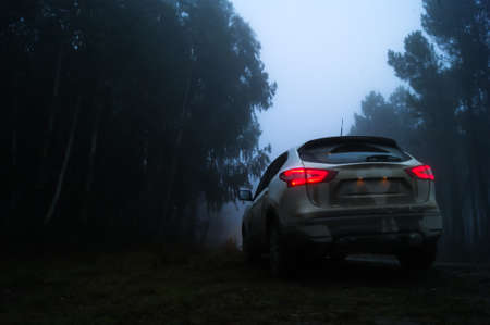 Rear view of a car in a foggy forest with red taillights on. Roadside assistance concept