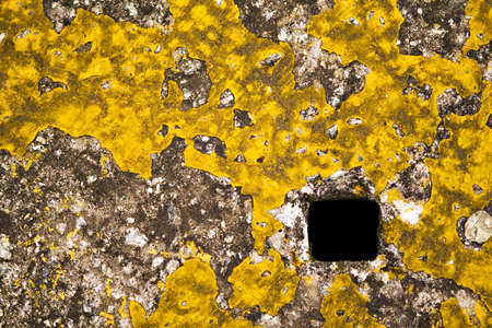 tatter: Square concrete manhole cover with scraps of yellow paint